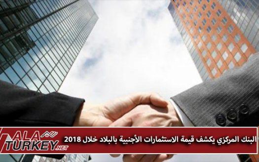 البنك المركزي التركي يكشف قيمة الاستثمارات الأجنبية بالبلاد خلال 2018